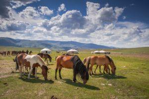 Altai mountain areas